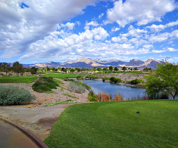 Henderson NV Community Information by Compass Realty & Management
