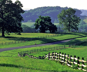 Brandywine River Valley - Southern Chester County PA real estate, property, farms, land, community information