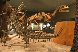 Delaware Museum of Natural History - Northern Delaware real estate, property, farms, land, community information