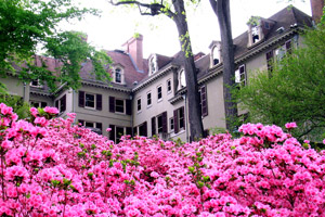 Winterthur Museum and Gardens - Northern Delaware real estate, property, farms, land, community information