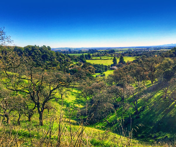 Green Valley CA Community Information by Magnum Opus Real Estate