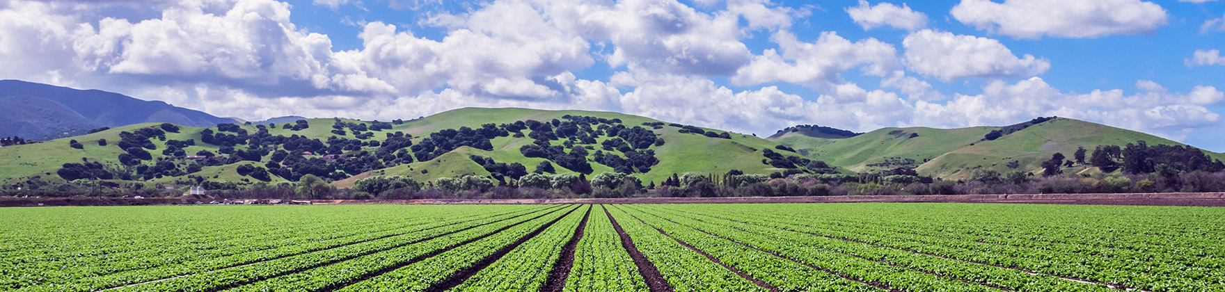 San Joaquin Valley CA Area, Community and Real Estate Information, Homes for Sale, Property Listings