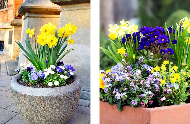 A small scale vignette is one beautiful springtime flower pot garden idea