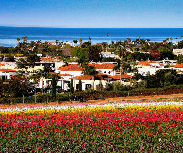 Carlsbad CA community and area information