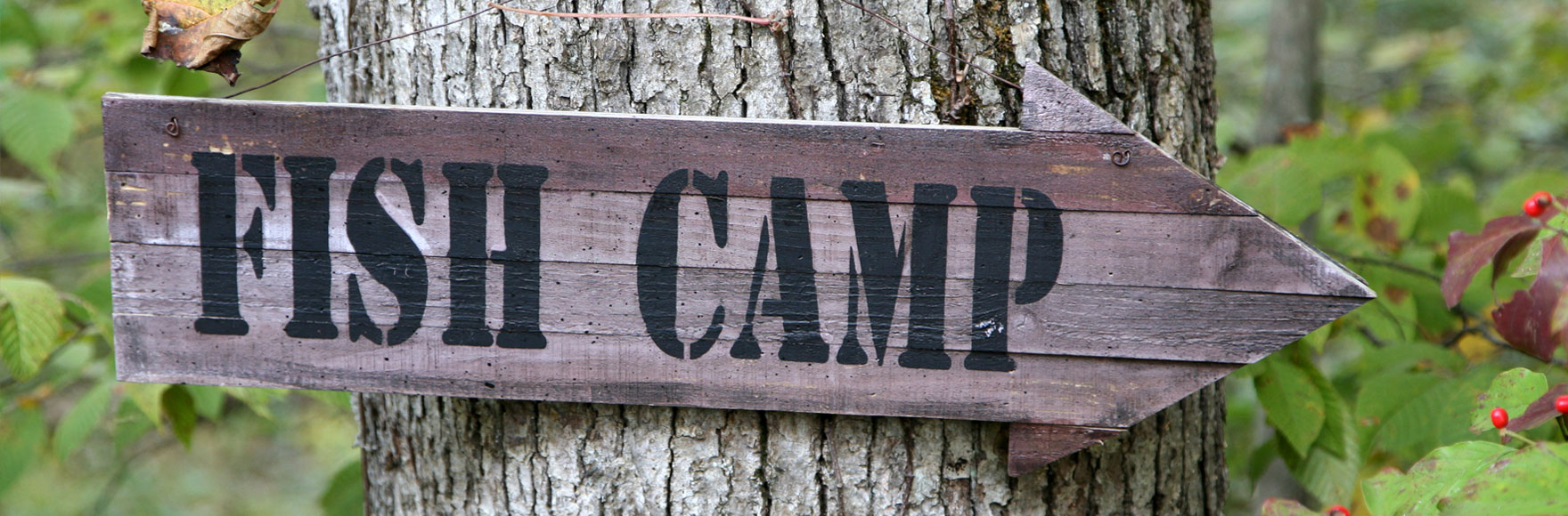 Fish Camp CA Real Estate and Area Information