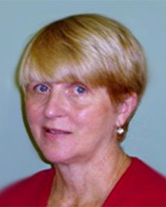 Mary L VanVliet
