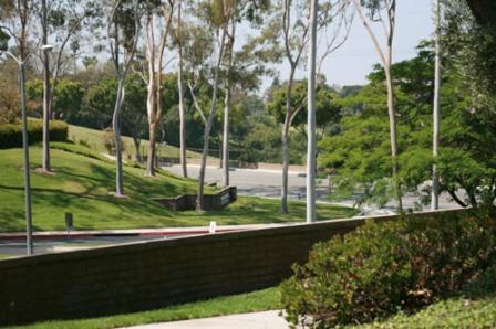 Landmarktrees