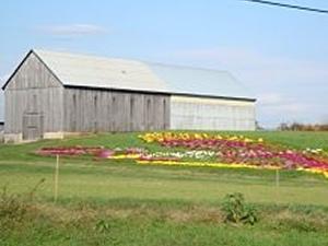 Davidsonville Homes
