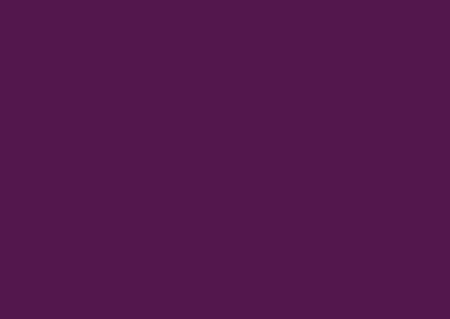 Meet Anne Erickson