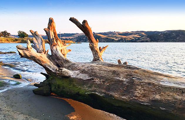 Recreation areas near Benicia CA