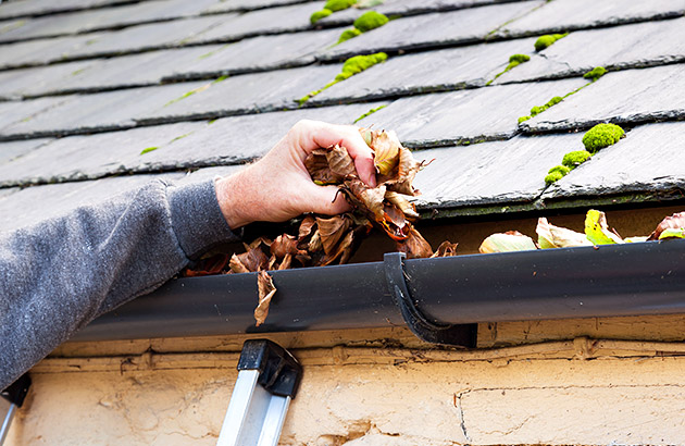 Close up of person pulling leaves out of a rain gutter with their hands