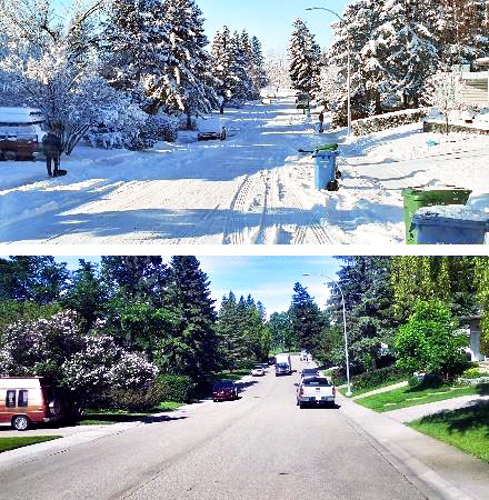 Comparison of neighborhood covered in snow versus the same view during a warmer season