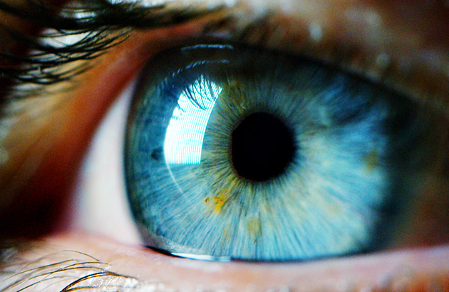 Macro focused on a womans blue eye