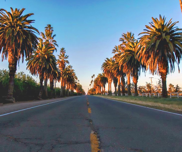 Explore the Chowchilla CA area and community