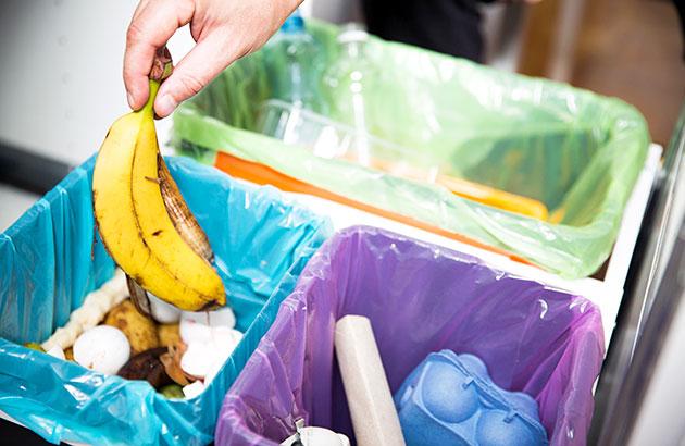 Personal placing banana peel in compost bin