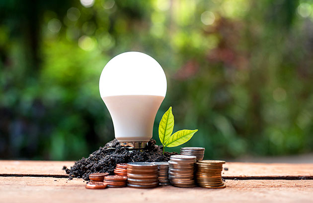 A light bulb standing in soil with a leaf and coins beside it