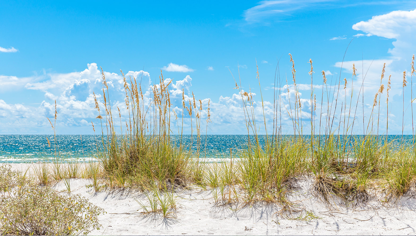 real estate home places st petersburg fl