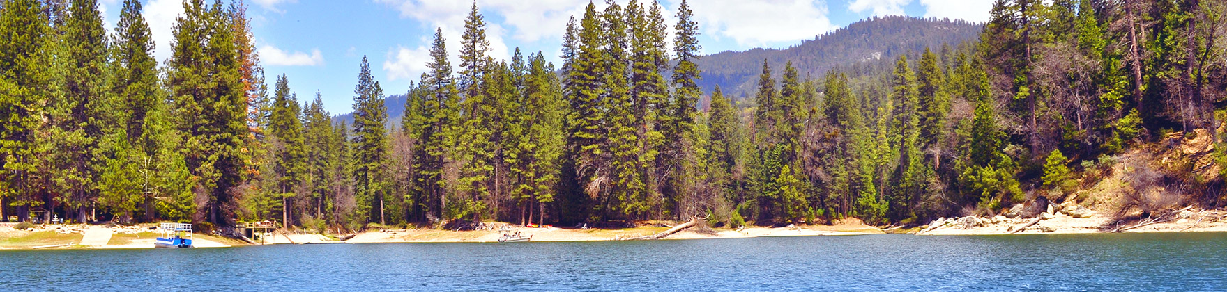 Explore the Bass Lake CA area and community. Find Bass Lake CA Homes for Sale.